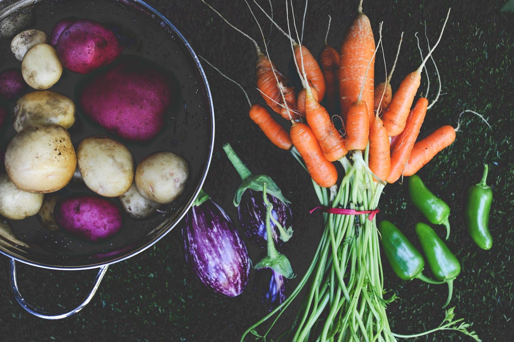 Favorite Vegetable Varieties of 2015_Seattle Urban Farm Co.