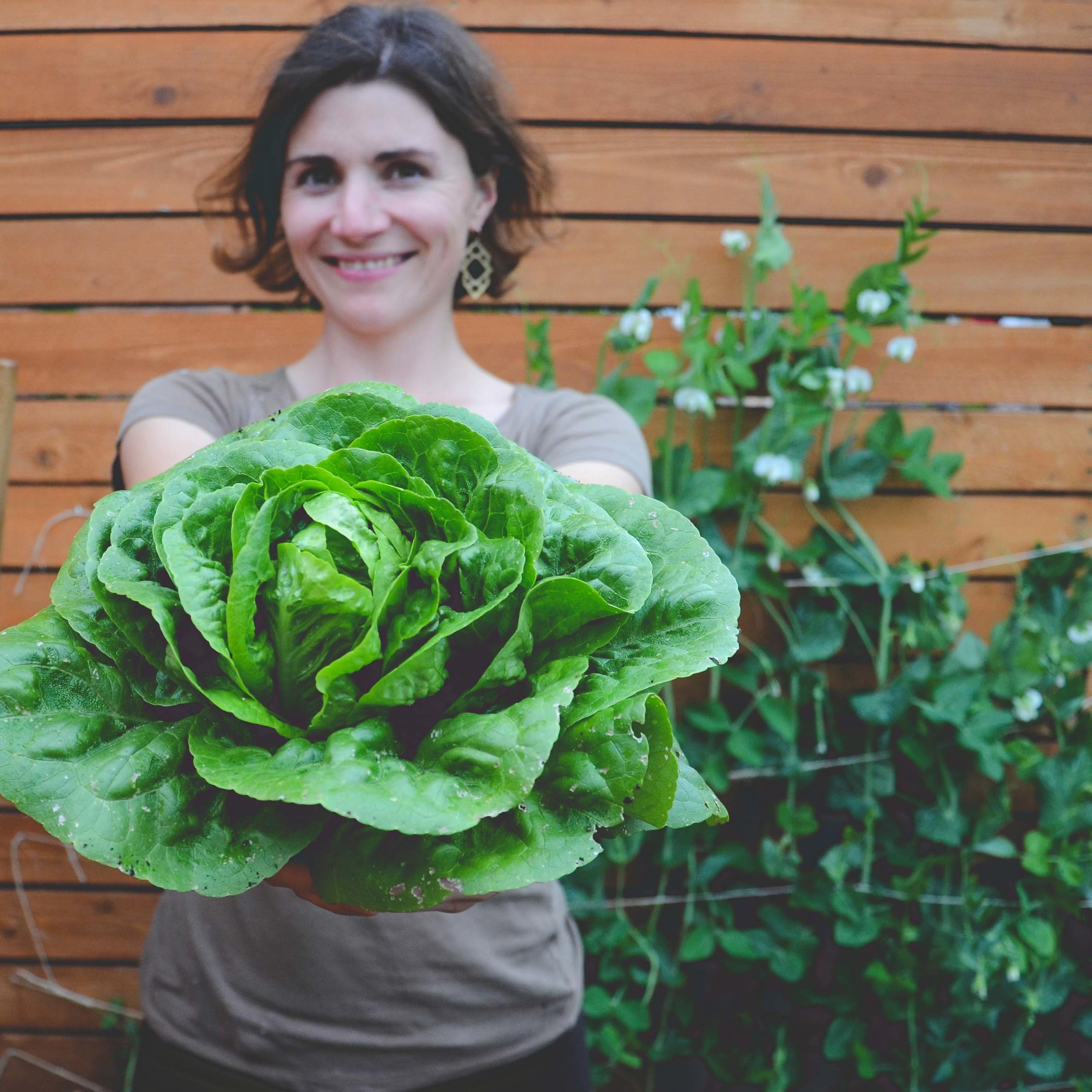 Hilary Dahl_Seattle Urban Farm Co.