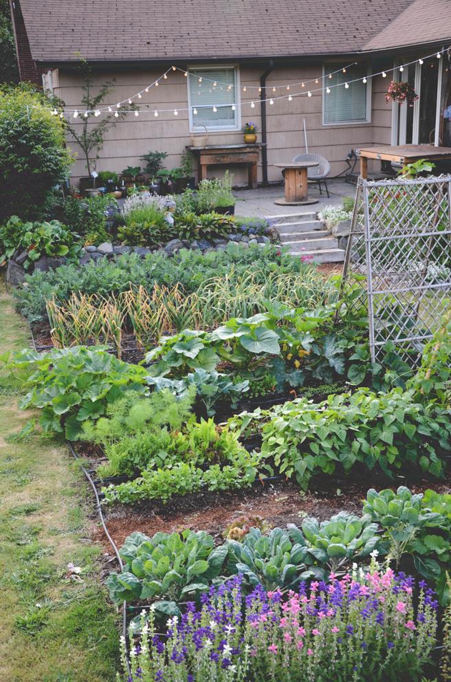 -Moon base_garden_vegetable garden.png