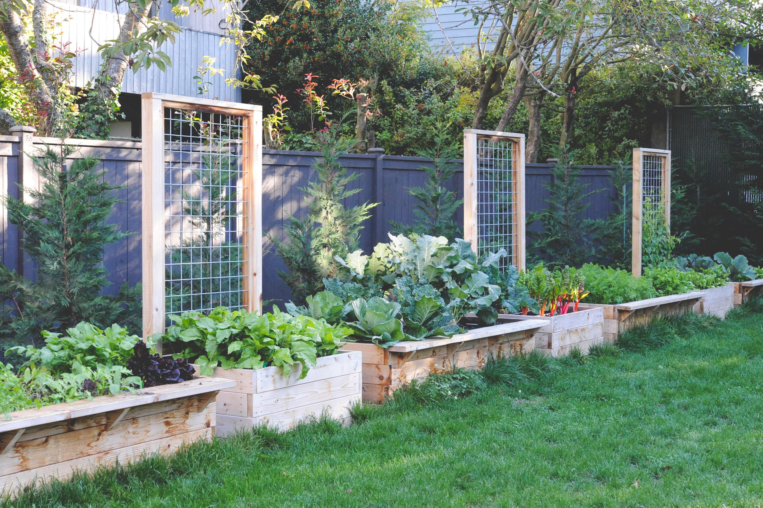 Plan + Prep Your Edible Garden_Seattle Urban Farm Co.