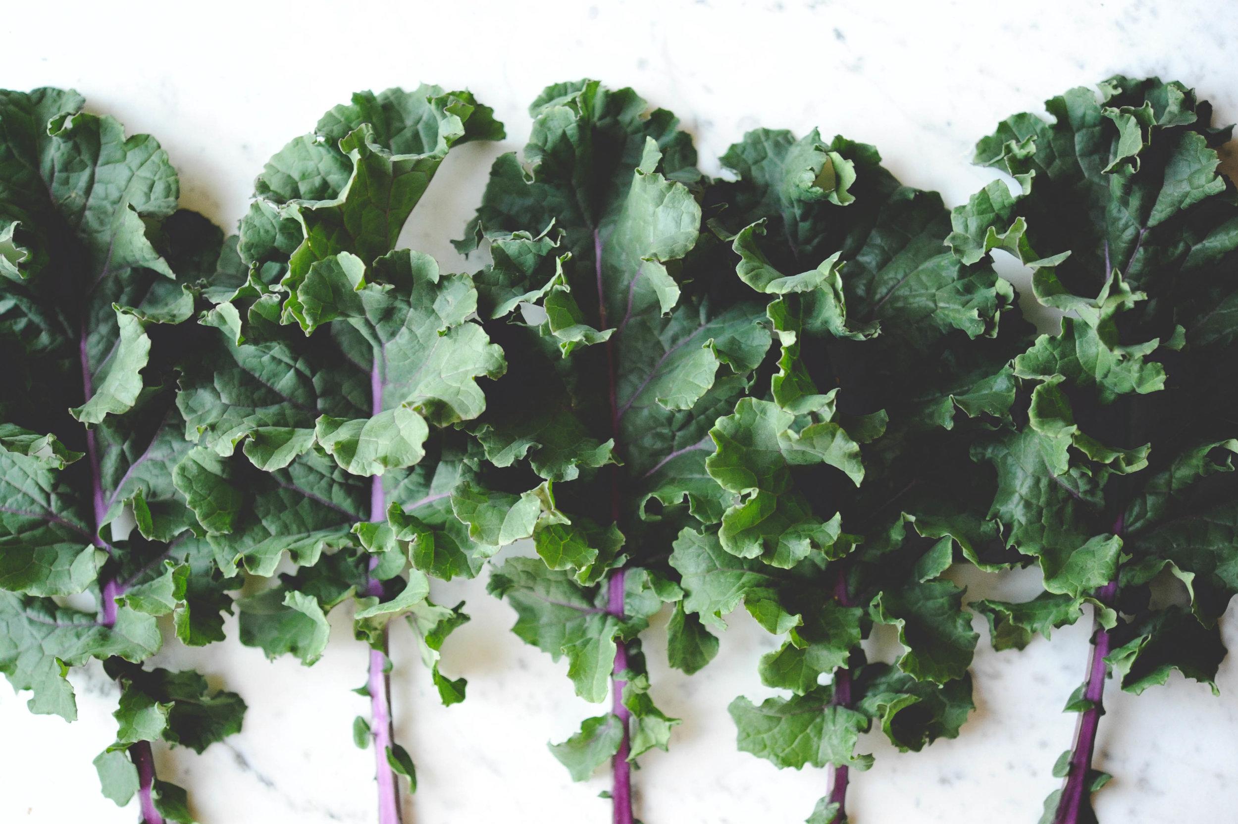 Kale_Pest Prevention.jpg