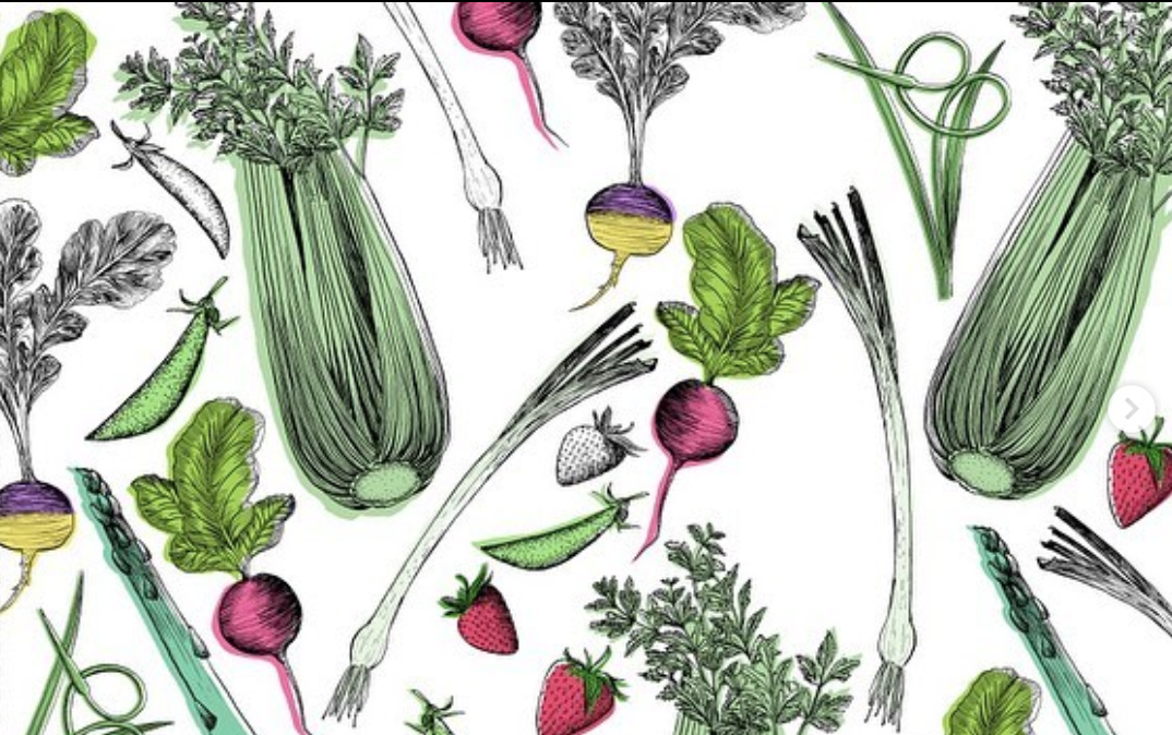 Illustration by Harriet Popham from    Vegetable Gardening Wisdom: Daily Advice and Inspiration for Getting the Most from Your Garden     .