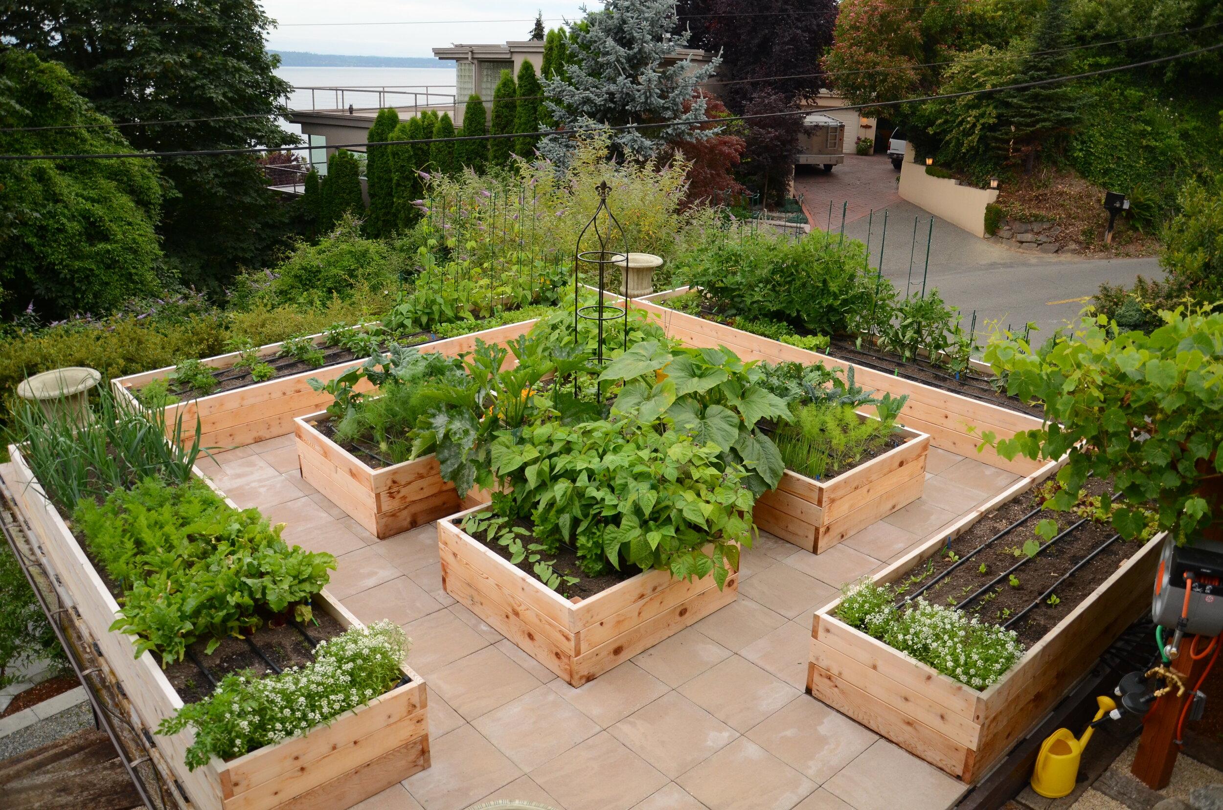 Raised Planters Inspiration ideas