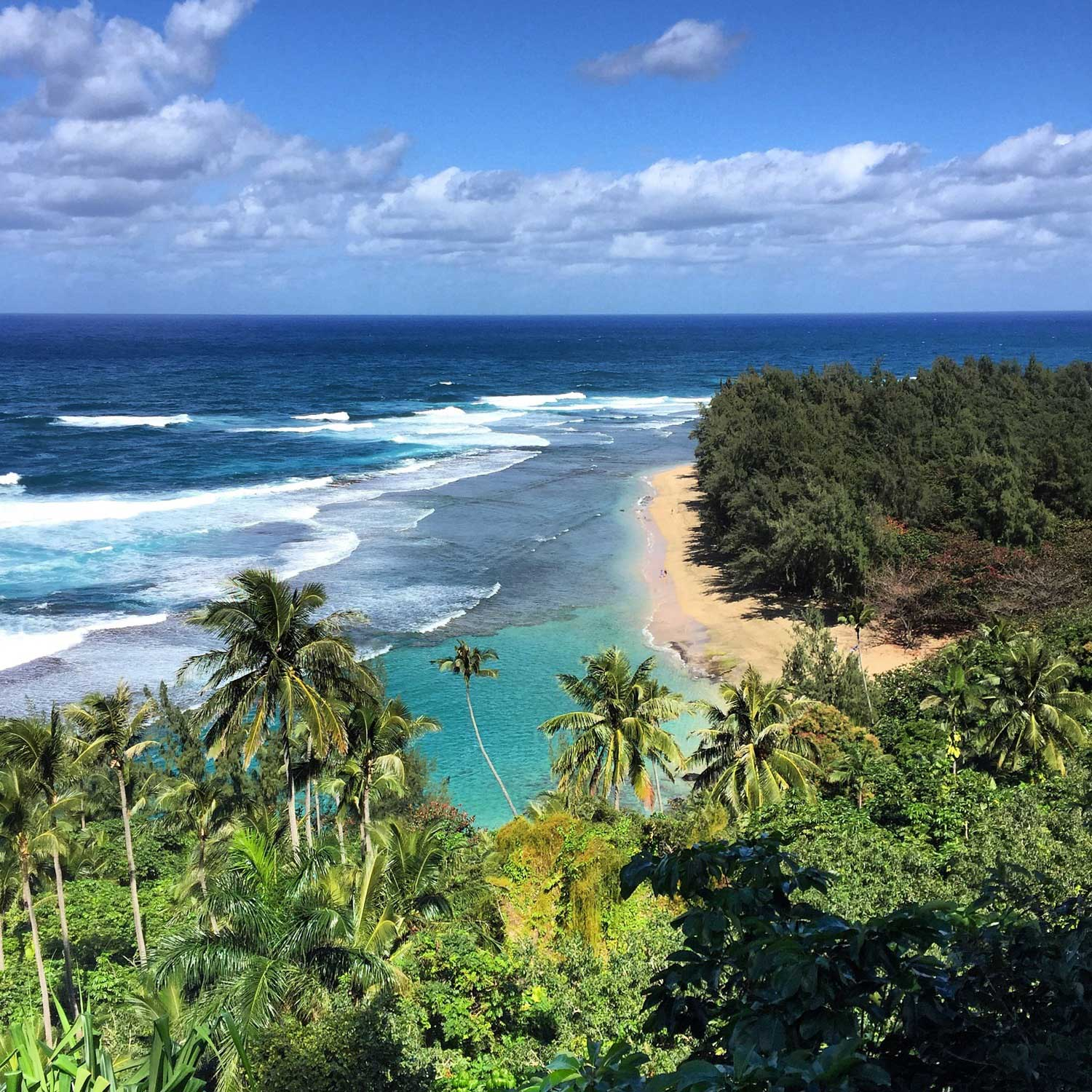 kauai_hawaii_city_guide_itsbeautifulhere17.jpg
