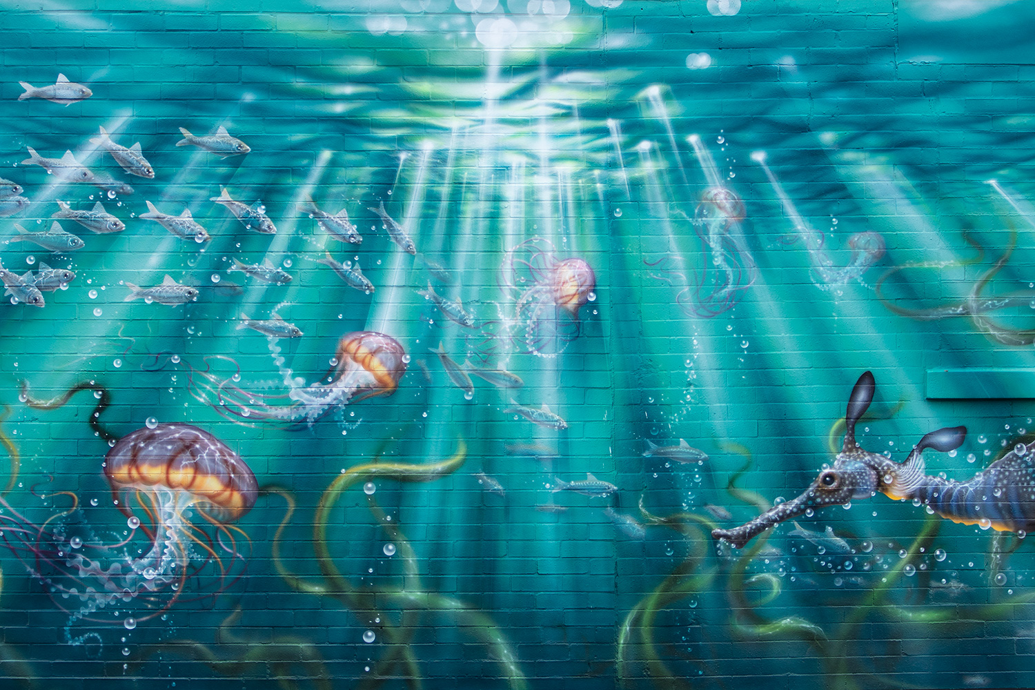 Mural for Shedd Aquarium