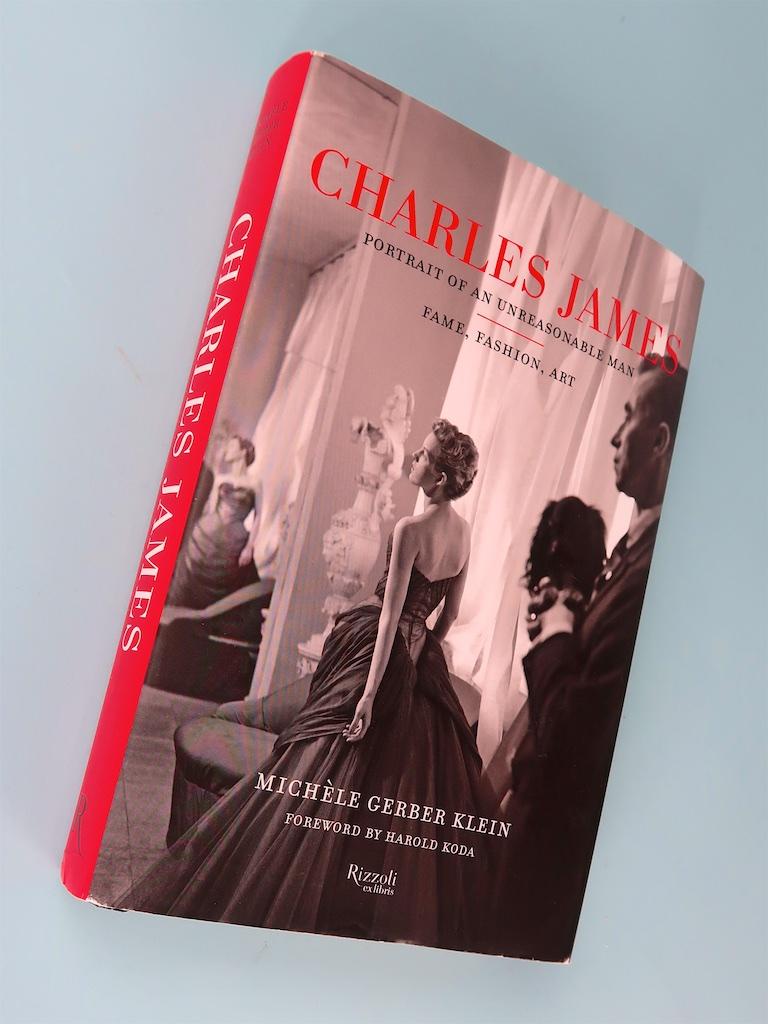 CHARLES JAMES -  PORTRAIT OF AN UNREASONABLE MAN  by Michèle Gerber Klein