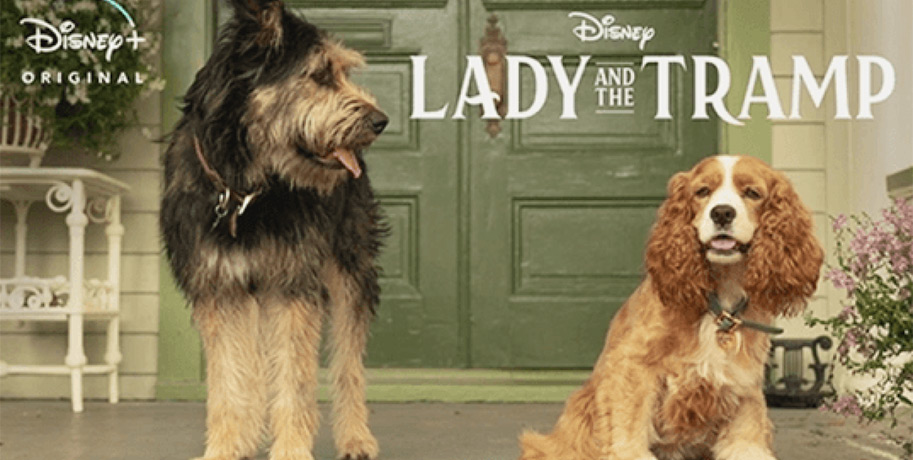 Disney Lady and the Tramp 2 streaming November 12, 2019
