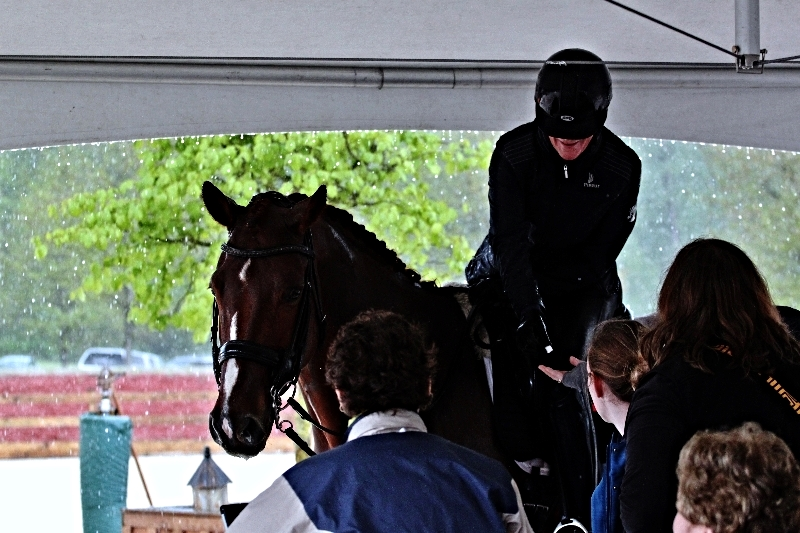 Olympian Leslie Reid and Fine and Smart escaping to the hospitality tent during a short hail storm!                                                                                      Photos by Courtenay Fraser                                                                                           WJH Dressage BC