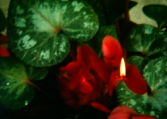 "EASTER MORNING, 2008, 8mm/Digital, color/sound, 10min. Music: ""In C"" by Terry Riley"