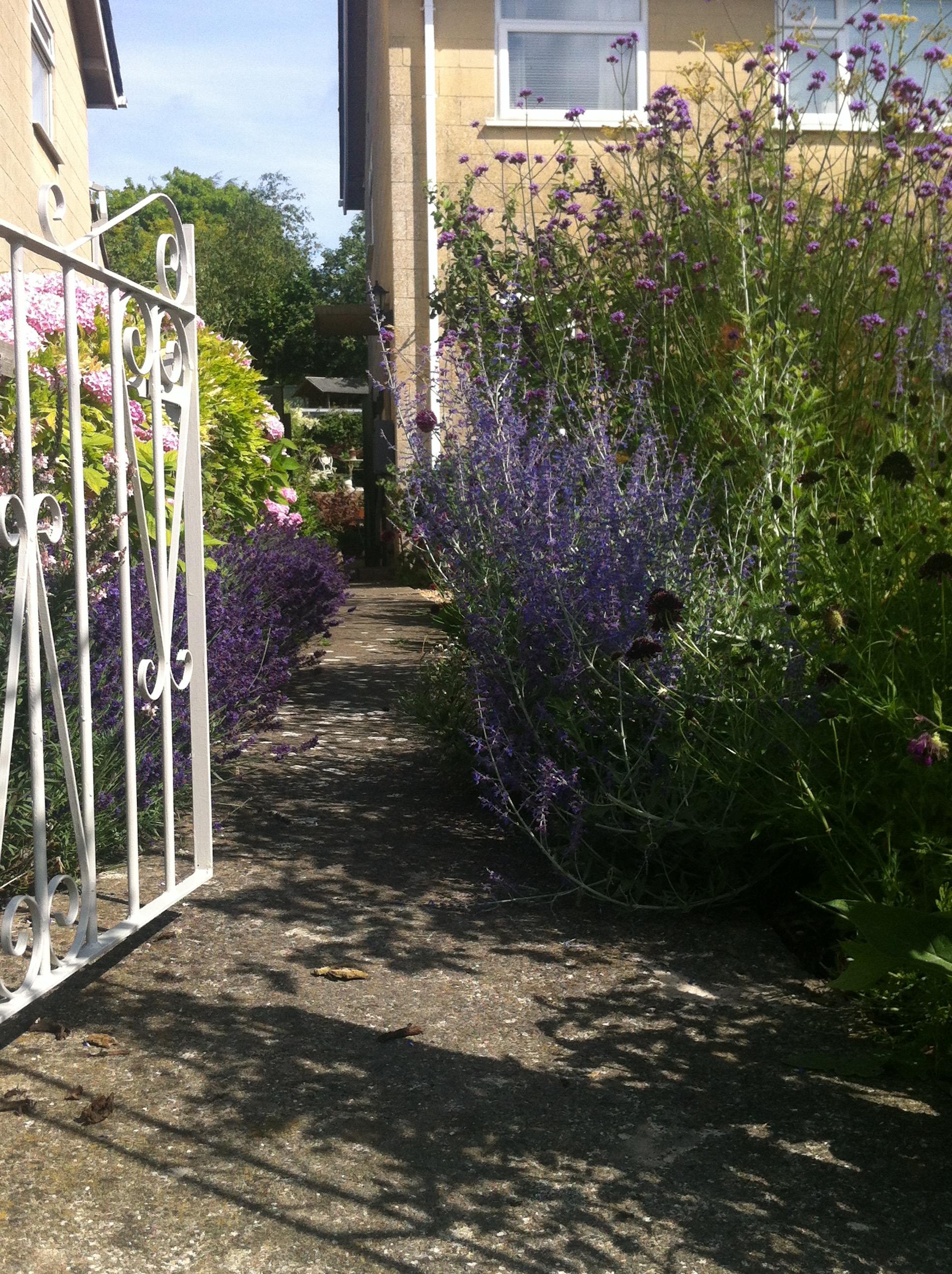 Arch gateway into the garden