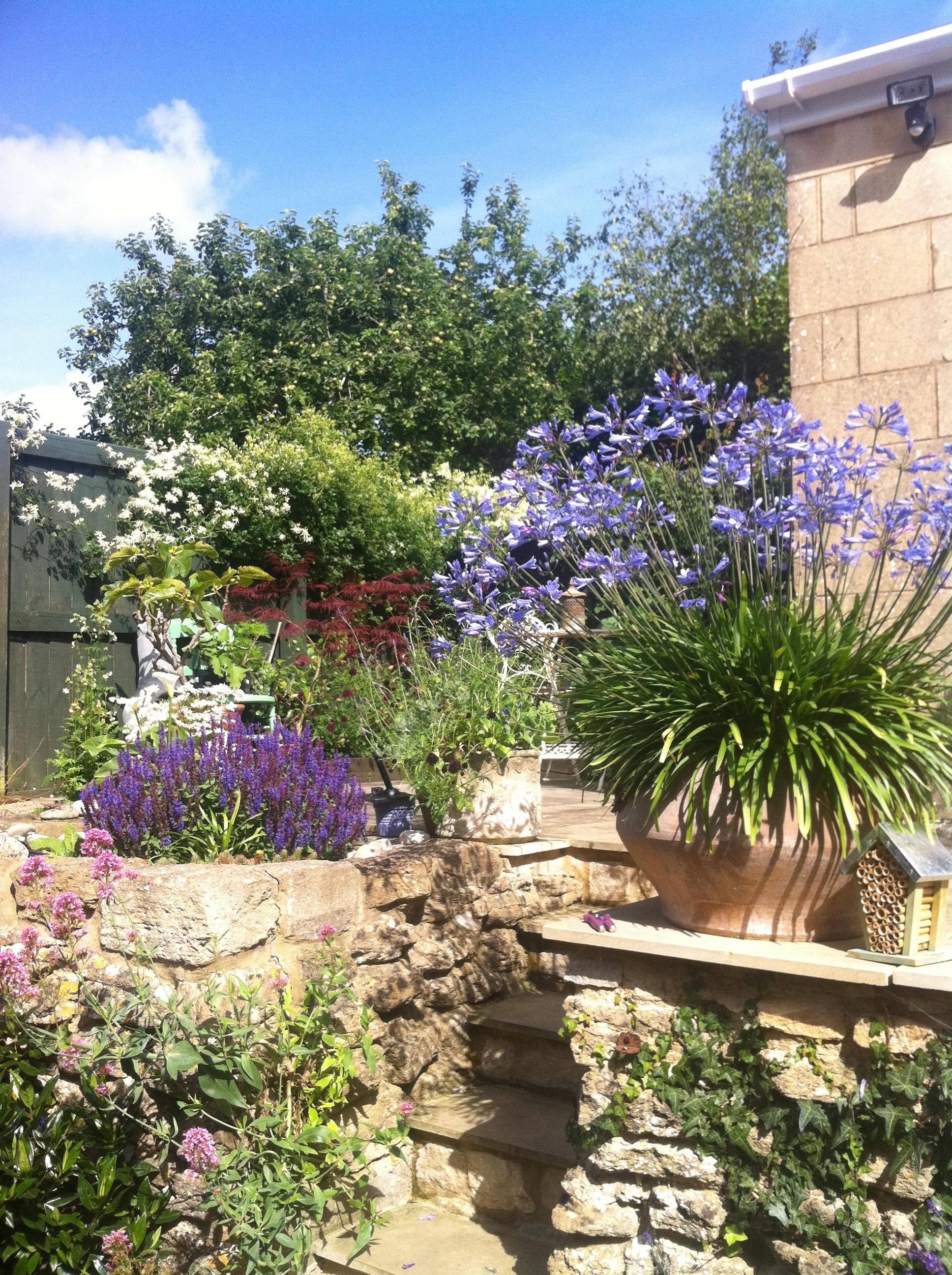 After: our secret little garden