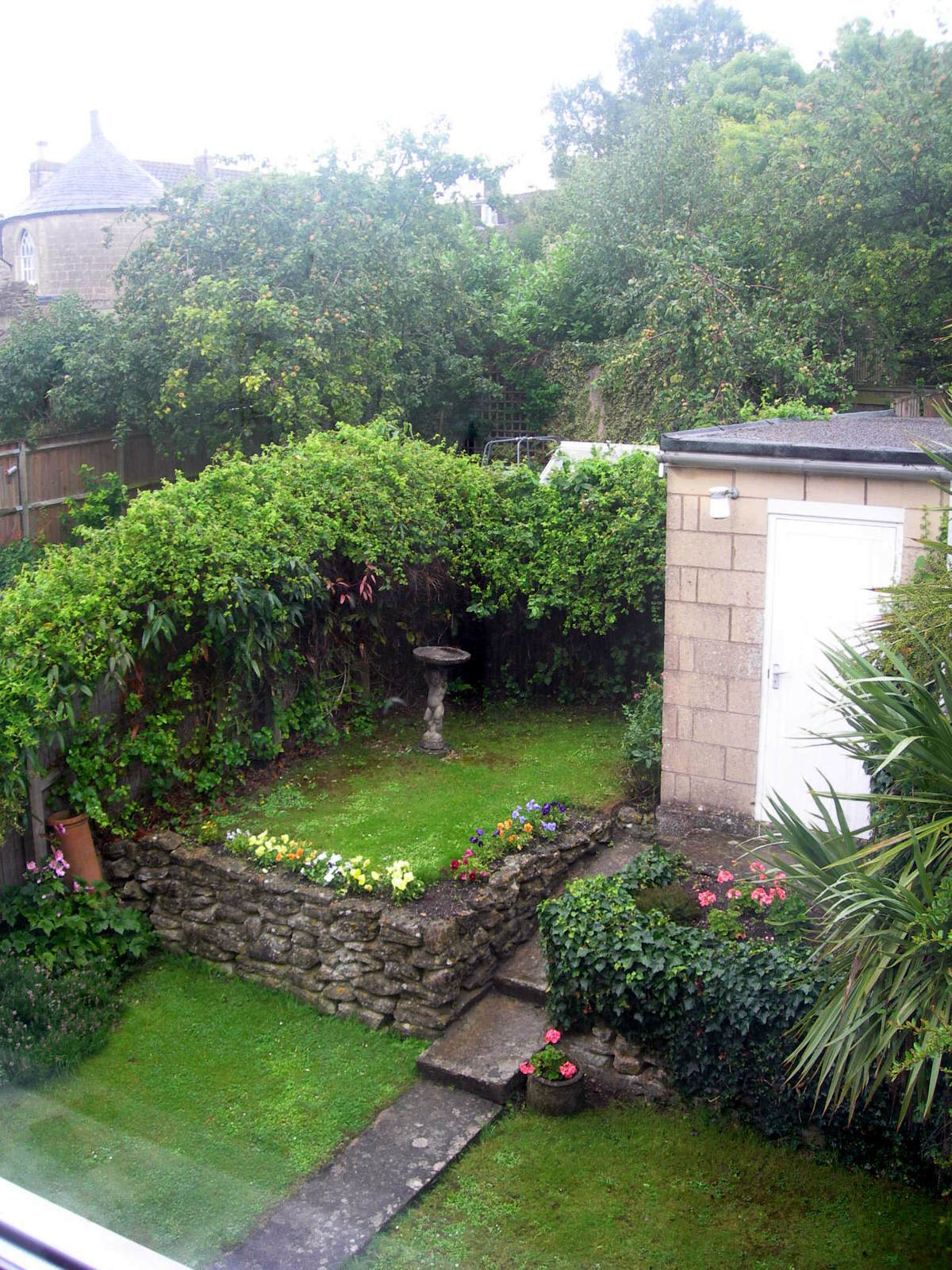 Before: our overgrown back garden