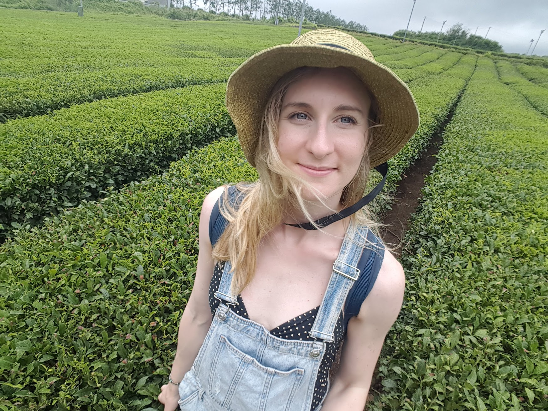 Hanging out in the Innis Free Green Tea Fields.