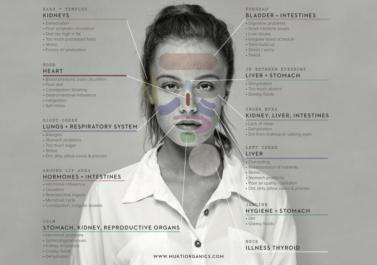 Click to see this detailed face-map and to learn tips for dealing with skin issues in different areas by Mutki Organics.