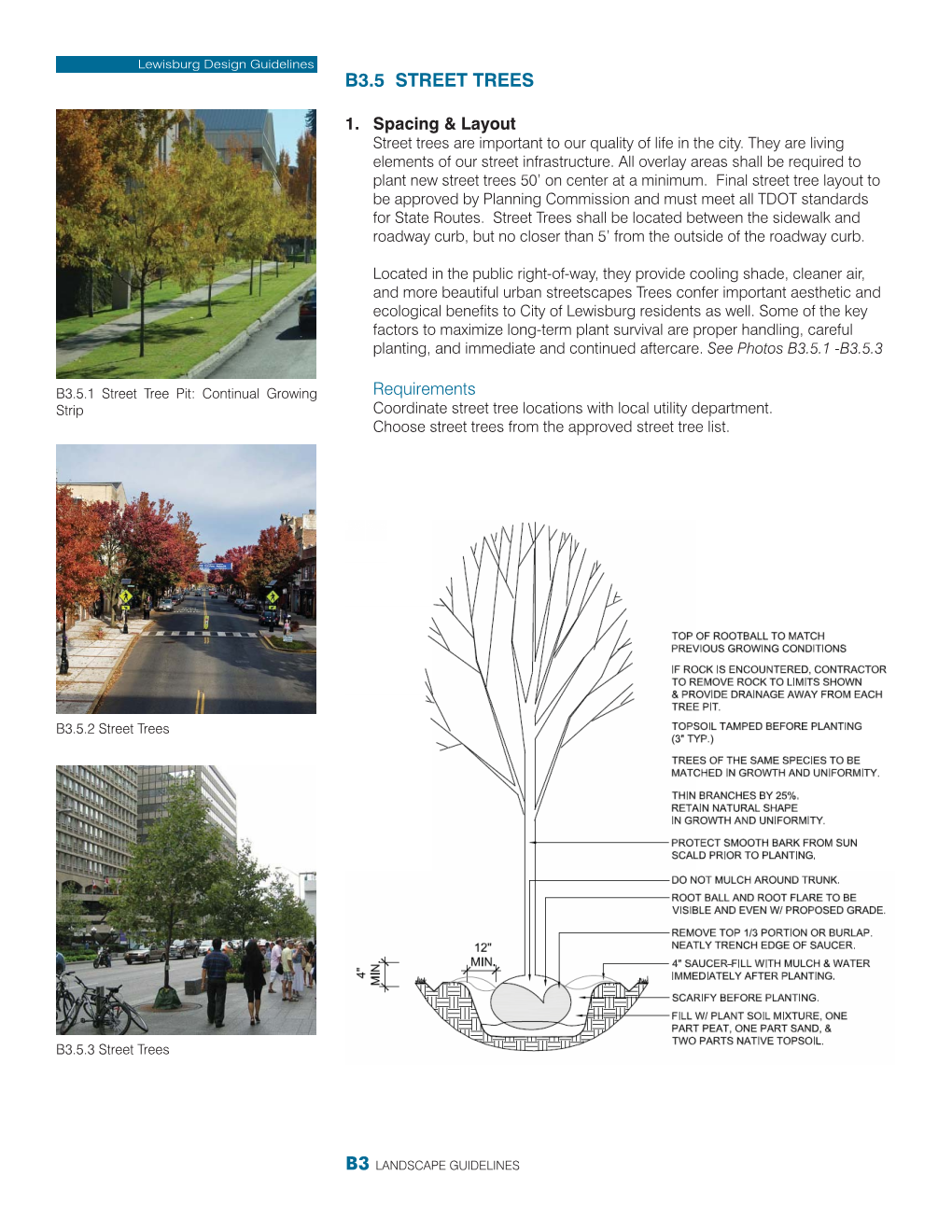 Example of Street Tree Guidelines