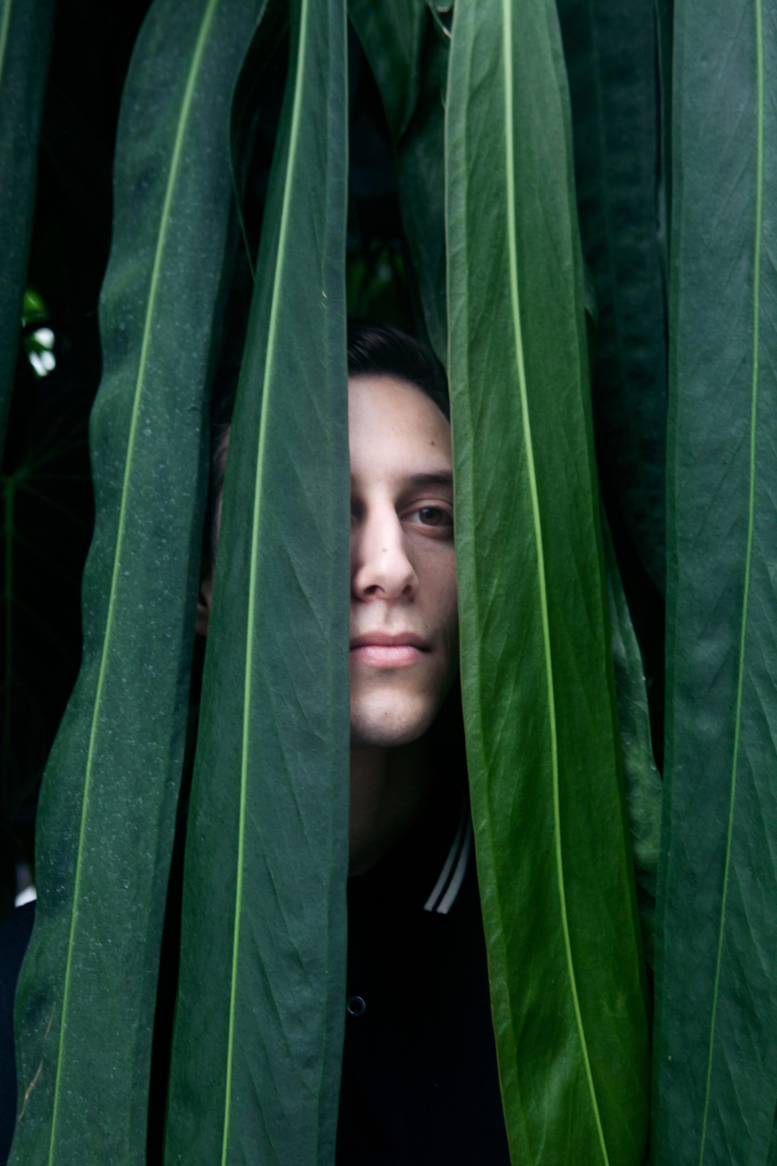 gardenweb.jpg