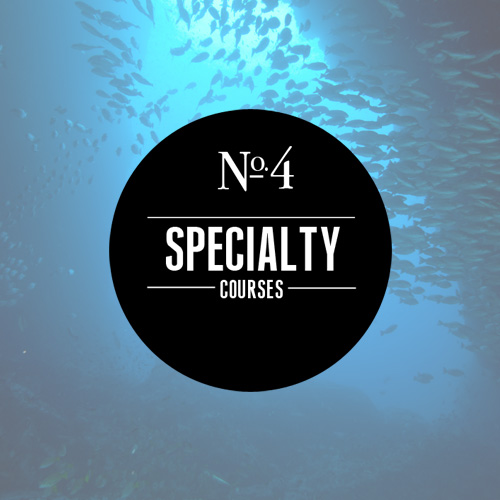 Learn more about our specialty scuba classes!