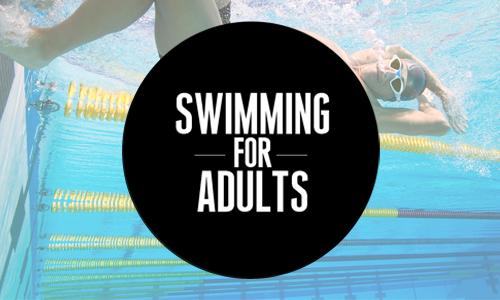 swimming_adults_programs