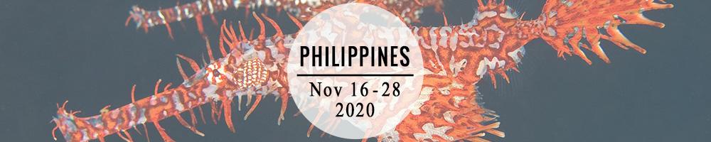 philippines_banner.jpg