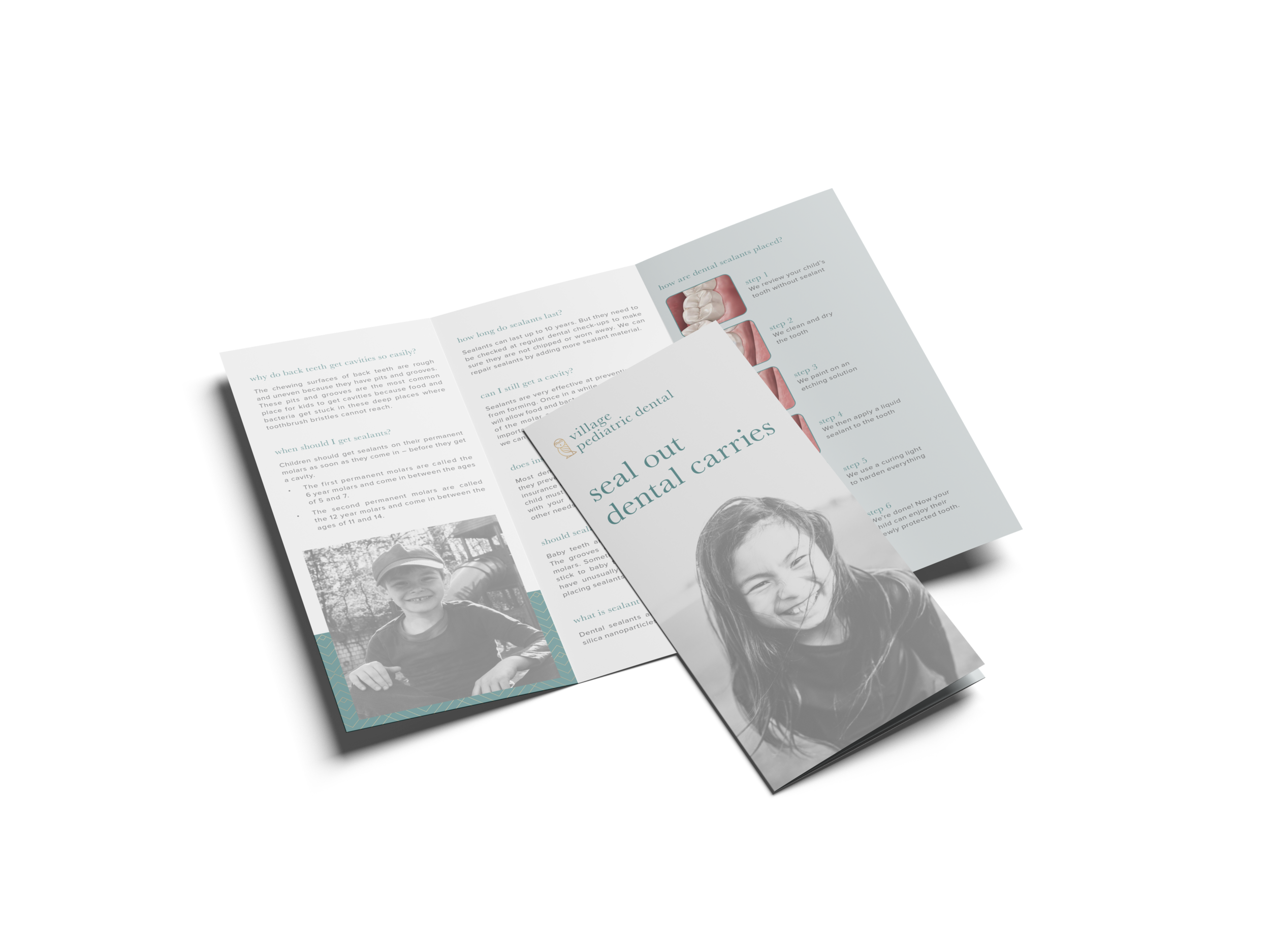 Tri-Fold Brochure Mockup2-5.png