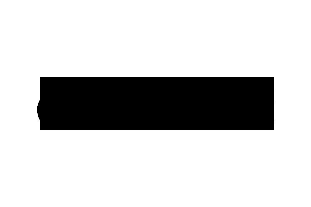 _0000s_0006_Thin-Logo-WS-FINAL.png