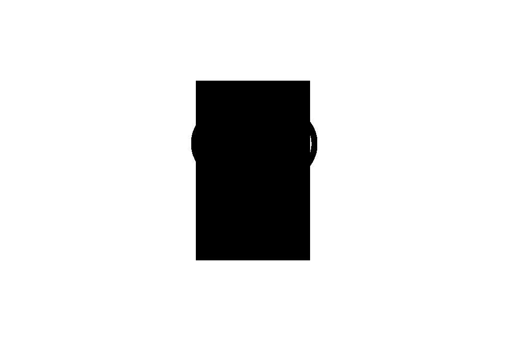 _0000s_0024_Alee-Interiors-Logo-V-L.png