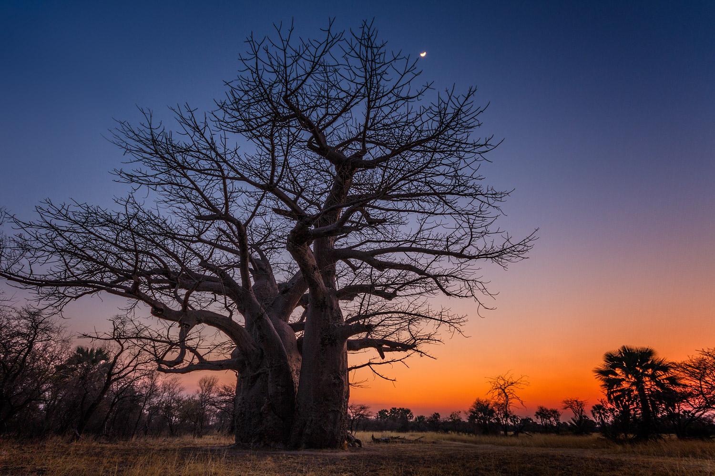 Namibian Sunset  . 10mm| 2.0sec | f8 | ISO100