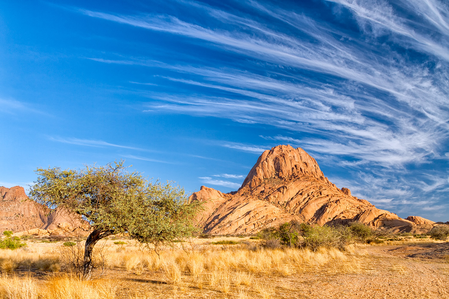 Spitzkoppe and tree - 17mm   1/40th sec   f10   ISO100