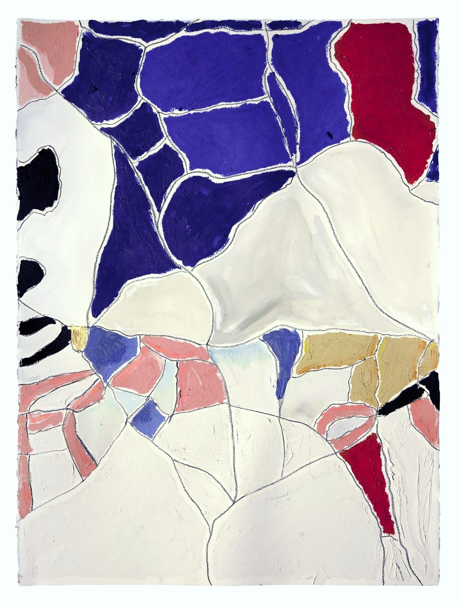 "White, Blue, Red  oil, charcoal, gouache on paper  30"" x 22"""