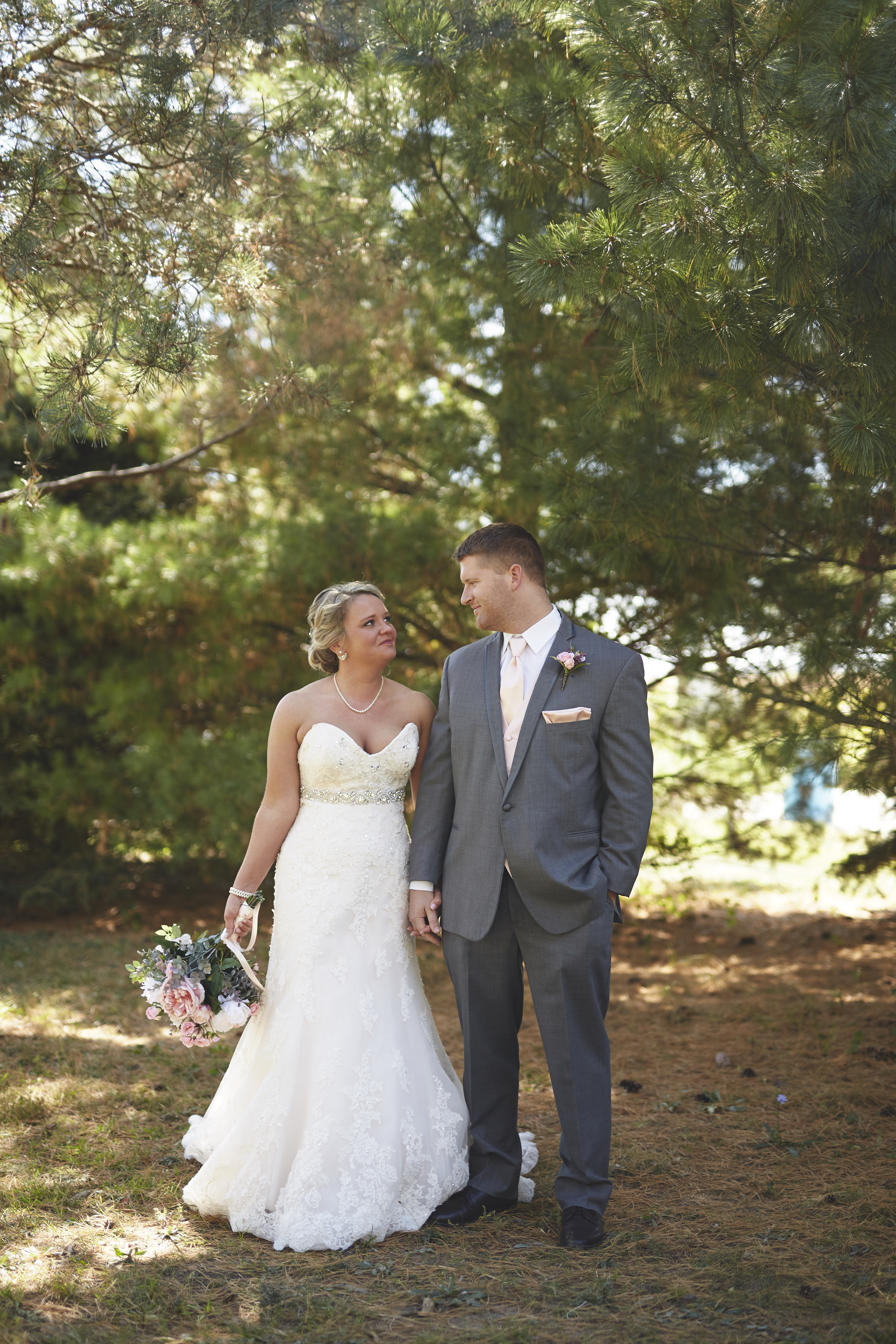 wedding photography in Springfield Illinois