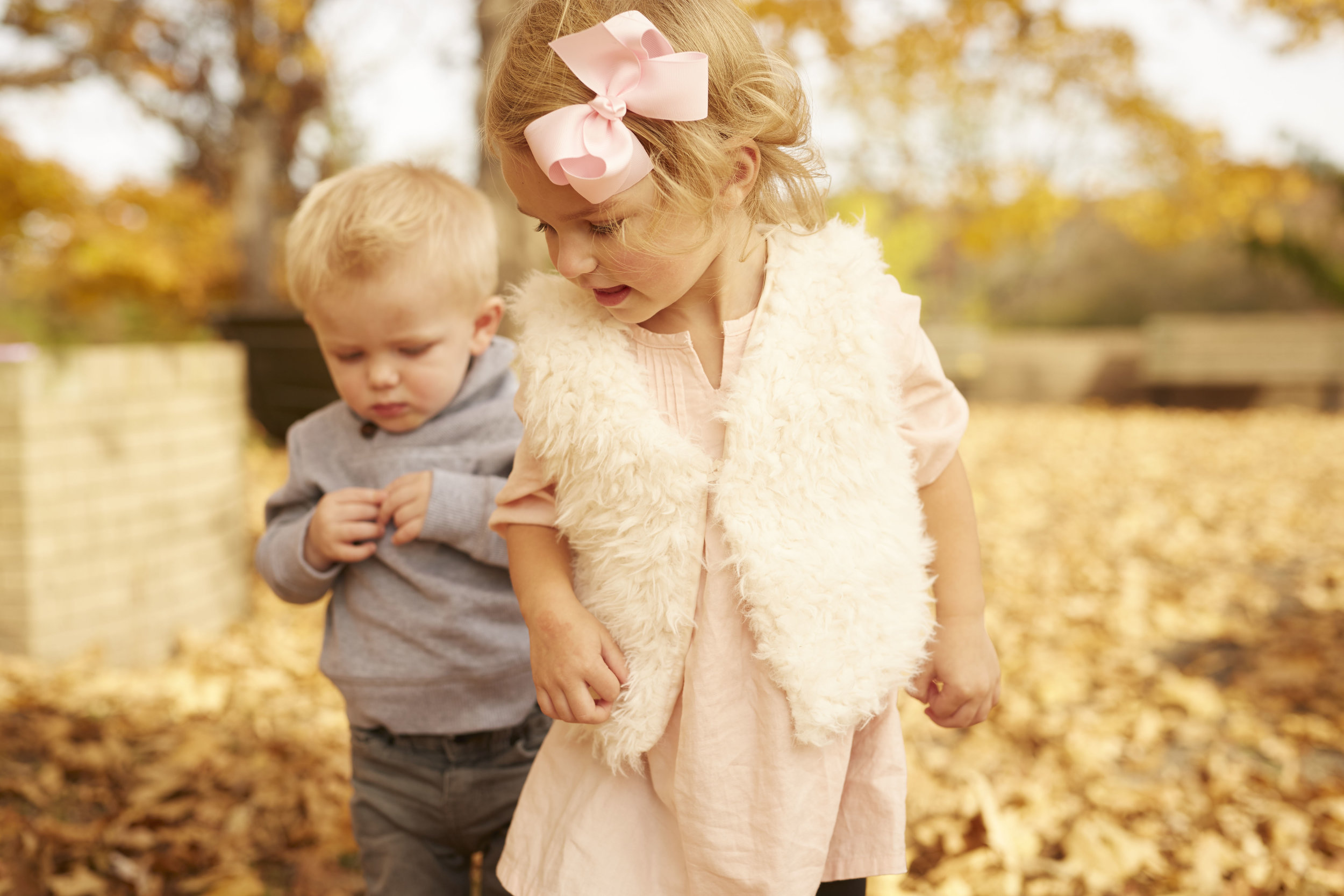 family photography in park with toddlers