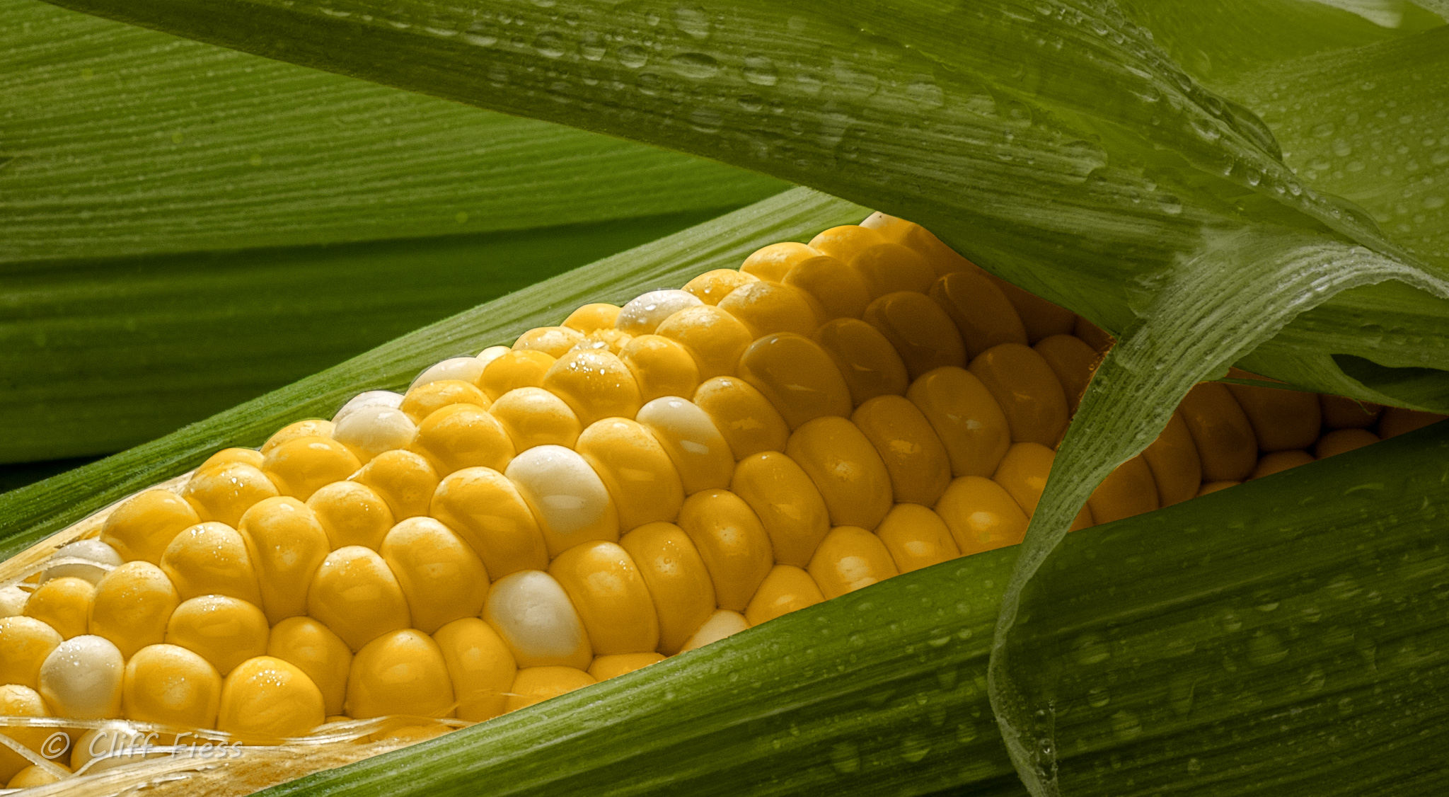 I-love-fresh-corn-on-the-cob.jpg