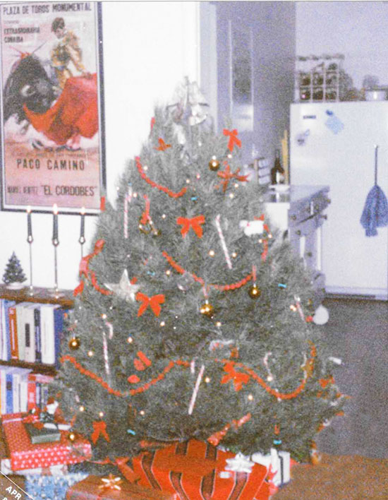 Our first Christmas tree, decorated with candy canes which we later ate.