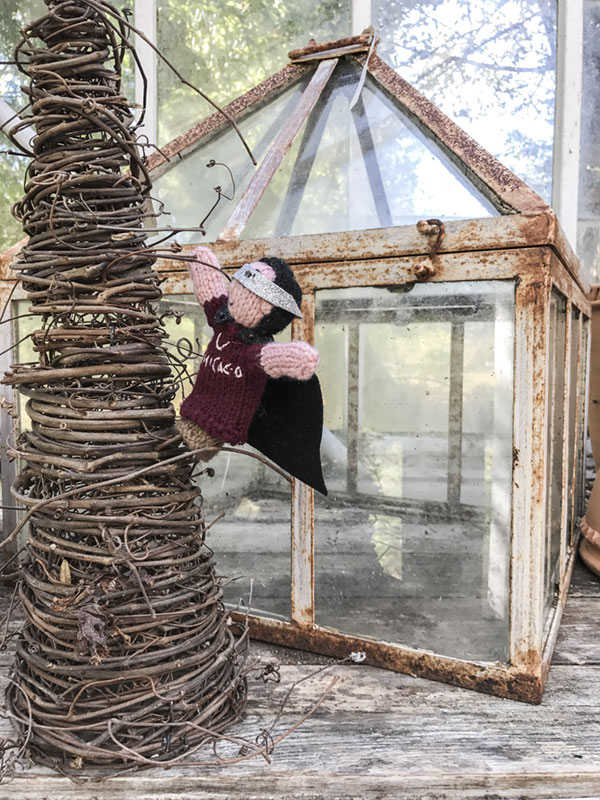 I shot this one in the greenhouse at Monche's Farm. It didn't occur to me until later that I was posing my Atticus puppet up in a tree, wearing a superhero cape and mask. A few years ago, he fell off the top of a building in France, landing in a courtyard four stories below. He fell through the branches of a tree that broke his fall and probably saved his life. I think the finger puppets are therapy tools.