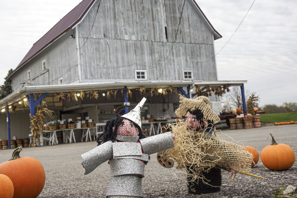 Wherever I went with my finger puppets, random people enjoyed helping me pose them. Yesterday, the woman working at the farm stand wanted to art direct. She loved Jane and Nick as the Tin Man and the Scarecrow but she was quite disappointed that I didn't have the whole cast represented. And she kept hollering at her customers to get out of the frame of the photo.