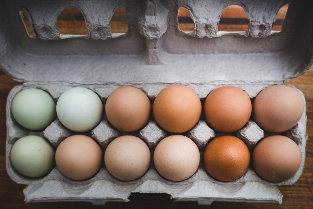 eggs_1000.jpg