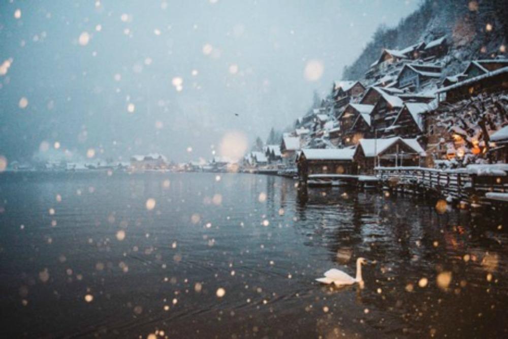 Snow 1000.jpg
