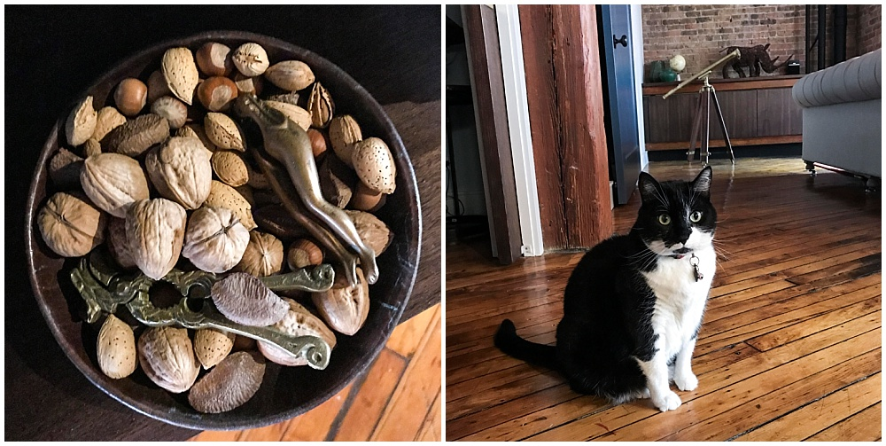 Left: Even a bowlful of nuts looks beautiful in that moody Chicago light. Right: Bo, the cat, is named after the revered Michigan coach, Bo Schembechler. It hurt my Illini fingers to type that line.