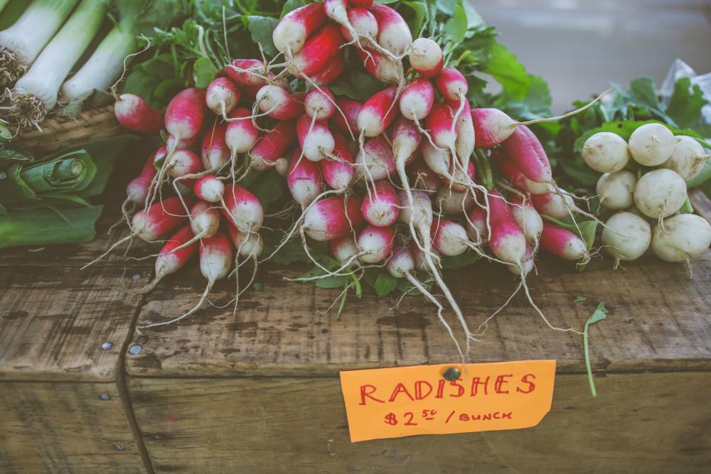 radishes_1000.jpg