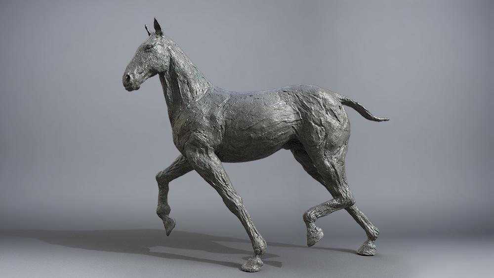 horseTest_001.jpg