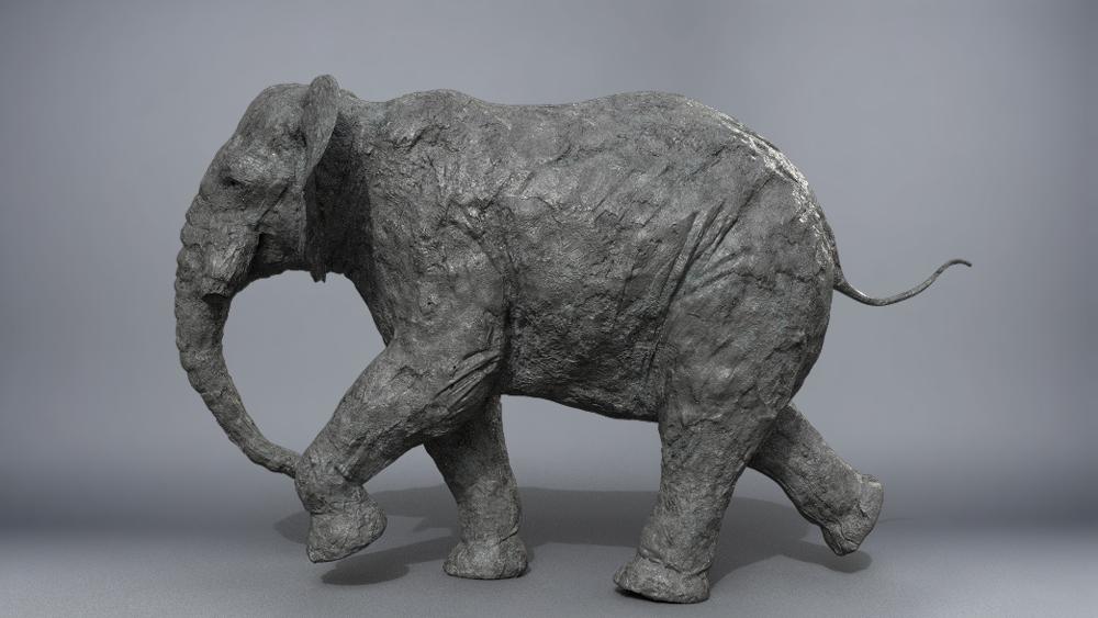 ElephantTest_001.jpg