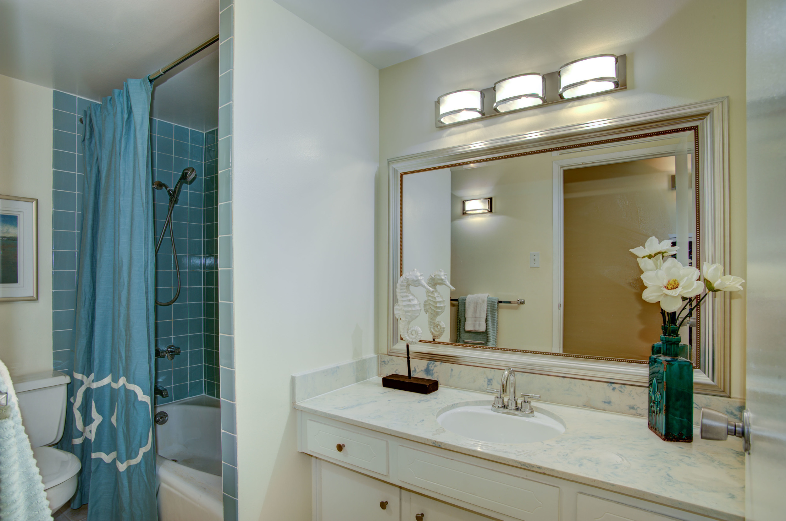 1555_lakeside_drive_unit_93_MLS_HID978716_ROOMbathroom.jpg