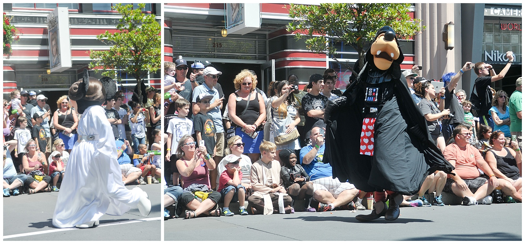 Minnie Leia and Darth Goofy