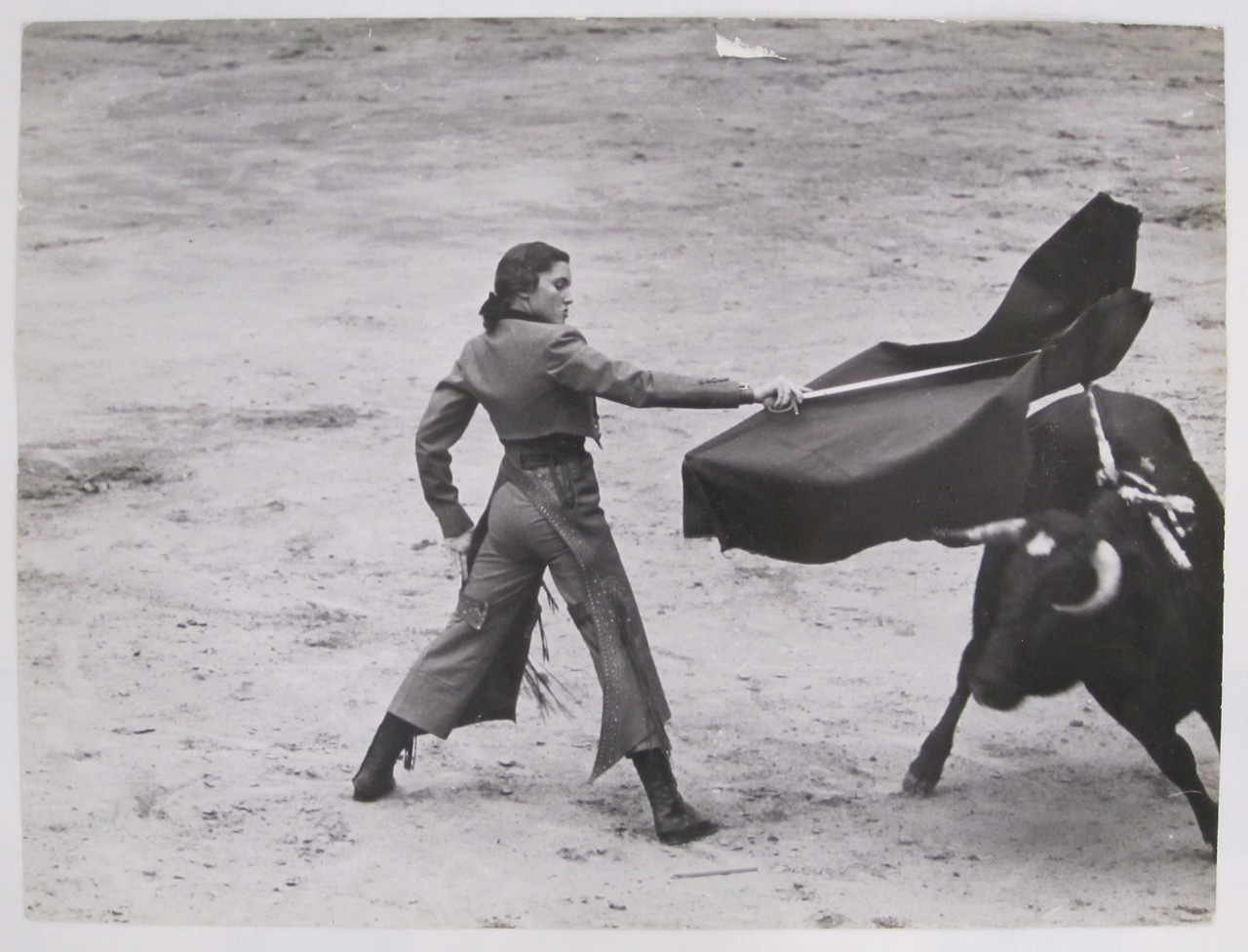 """Known as """"The Golden Goddess"""", Cintrónbecame the first female bullfighter ( torera ) to compete when she did so in 1936, at age fourteen. Widely seen as the most famous female bullfighter in the history of the sport, Cintron gored over 750 bulls during her extensive career. At a 1940 event in Mexico,Cintrónwas injured by a bull and brought to the infirmary. She refused to be taken off-site and later returned to the ring to kill the bull before collapsing. Her popularity in the sport was so great, that when she was arrested in Spain for entering the ring and bullfighting on foot (only fighting from horseback was allowed at the time), the audience sprang to her defense. As riots threatened to break out in the streets, the regional governor was forced to pardonCintrón.Orson Welles, who wrote the introduction to her autobiography later said: """"  Her record stands as a rebuke to every man of us who has ever maintained that a woman must lose something of her femininity if she seeks to compete with men  ."""""""