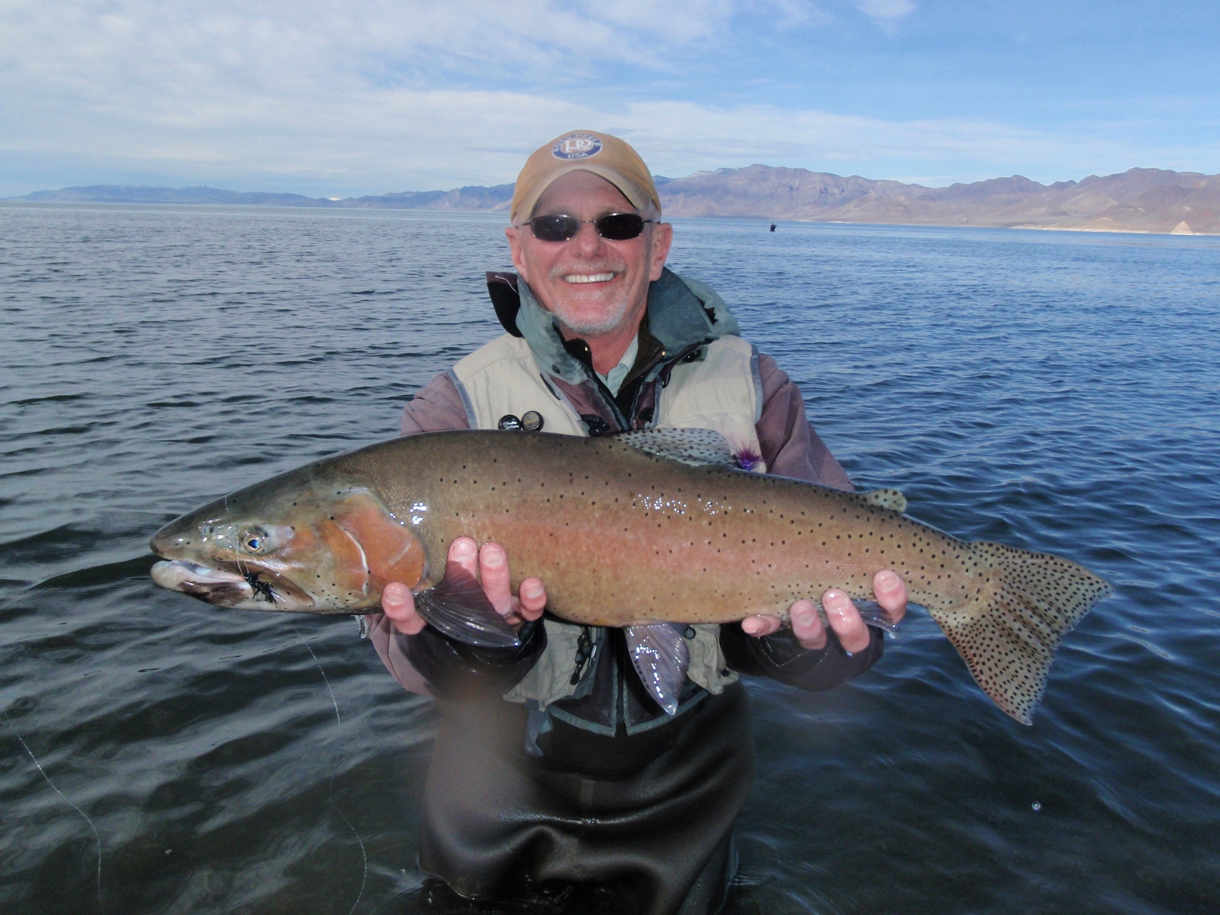 Pyramid Strain of Lahontan Cutthroat Trout