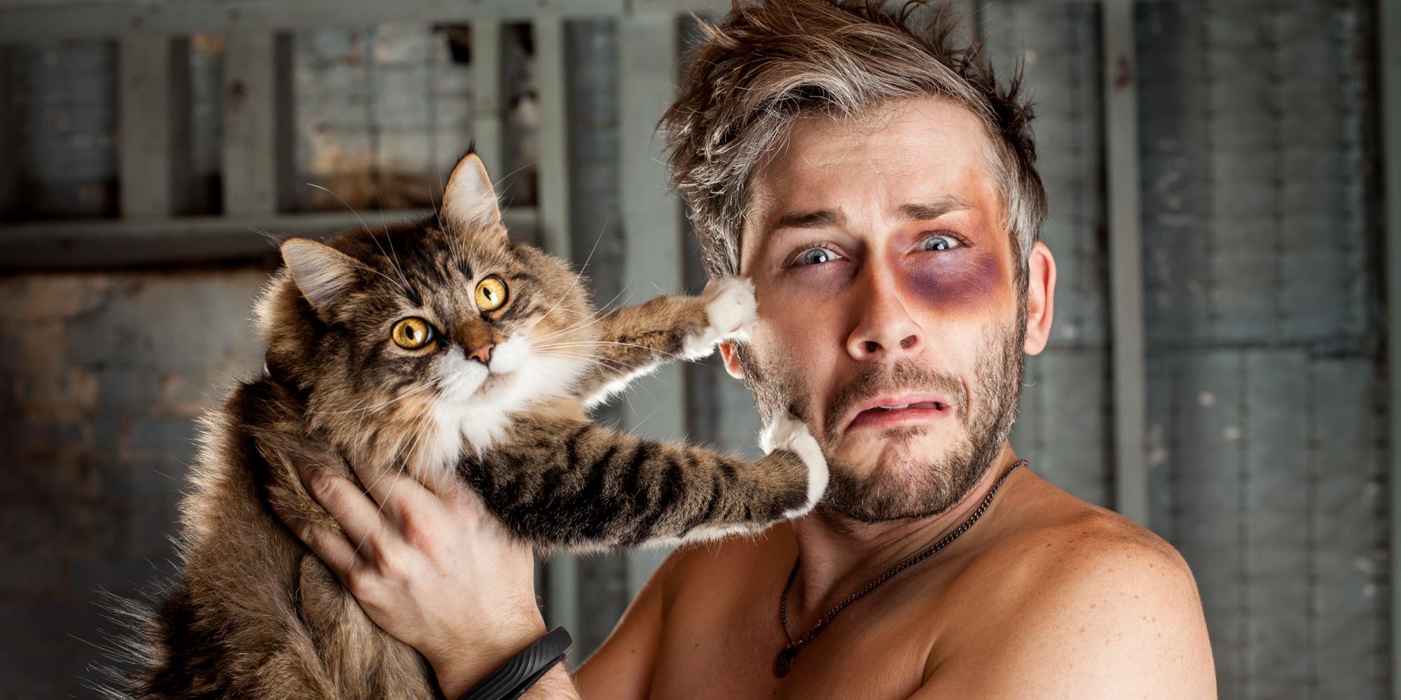 Ben+Cat+Web.jpg