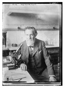 Image from The Library of Congress [Public domain], via Wikimedia Commons http://commons.wikimedia.org/wiki/File%3AElie_Metchnikoff_-_Between_ca._1910_and_ca._1915_-_LOC.jpg