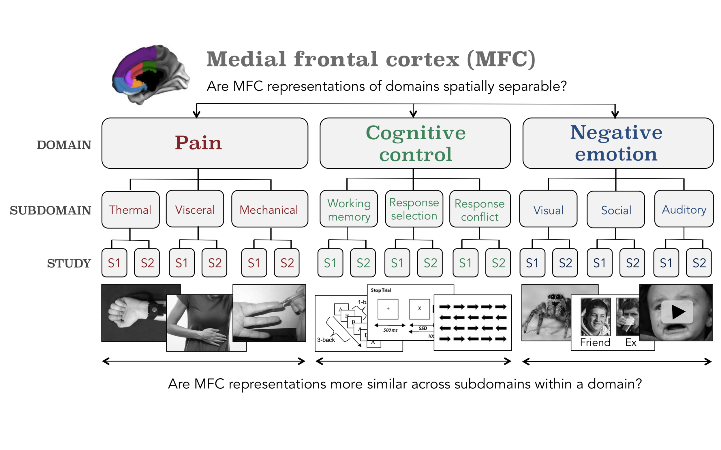 Figure A.  The hierarchical design employed by Kragel  et al.  compares the similarity of activation patterns in the medial frontal cortex (MFC) between subjects within two studies (S1 and S2), studies within subdomains, and subdomains within domains. The anatomical parcellation from Kragel  et al.  illustrates how the MFC was split into six sub-regions.