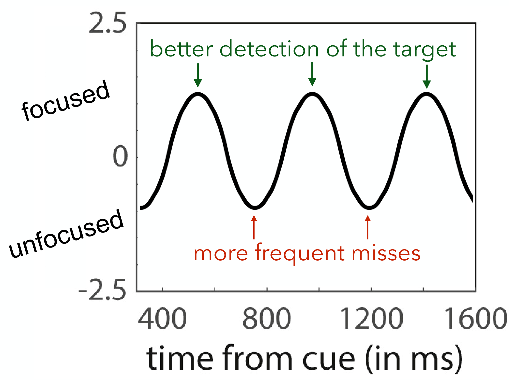 "Figure 2: Attention Fluctuates Between Focused and Unfocused States.  As players attempted to balance sharp focus and broad awareness in the game described in Figure 1, researchers noticed attention fluctuated between focused states (where the target dim light was detected) and unfocused states (where the target was missed, also known as a ""lapse"" of attention). Depending on when the target appeared relative to the cue, players were more or less likely to detect it. (adapted from Fiebelkorn, 2018)"
