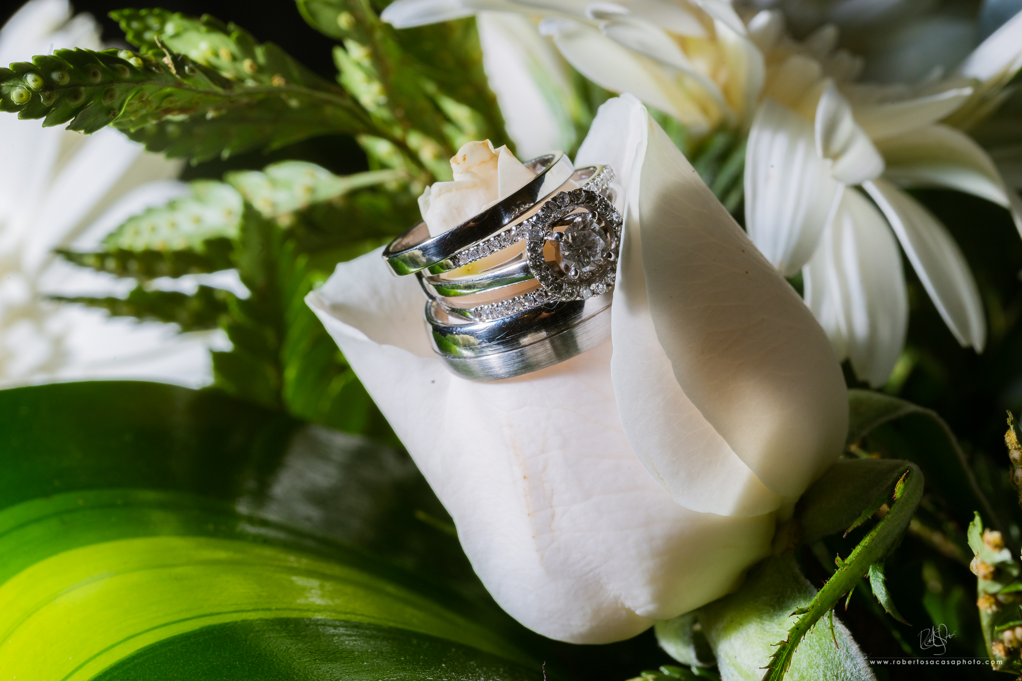 2017-Wedding-CecyMarco-31.jpg